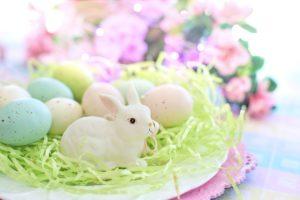 pääsiäinen pupu muna kevät kukat